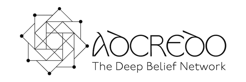 The Deep Belief Network